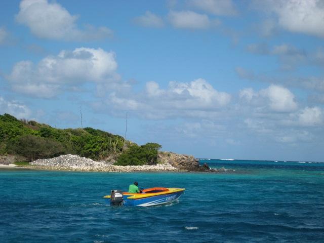 BoatBoy in der Karibik