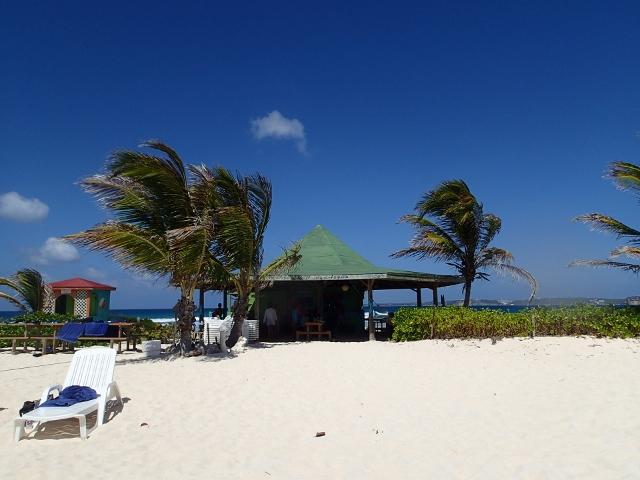 Sandy-Island-bei-Anguilla_6-Palmen_1-Bar