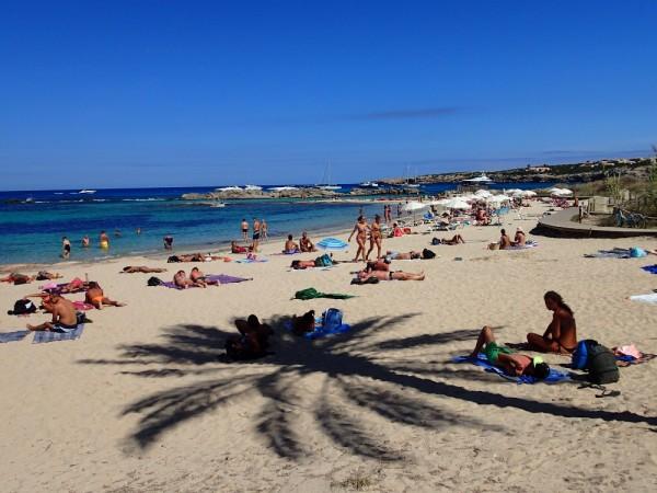 Im Palmenschatten an Formenteras Küste