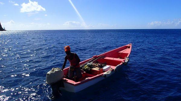 Die Früchte werden uns zum Boot gebracht, wir kaufen Bananen und vor allem Passion Fruit!!