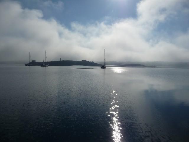 Nebel zieht auf