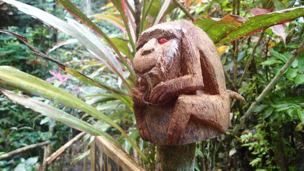 Kokosnusskunst oder doch Voodoo!?