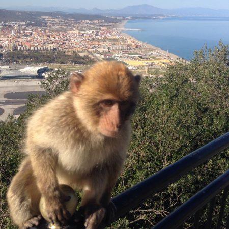 Das Wahrzeichen von Gibraltar (InsPIRATion)