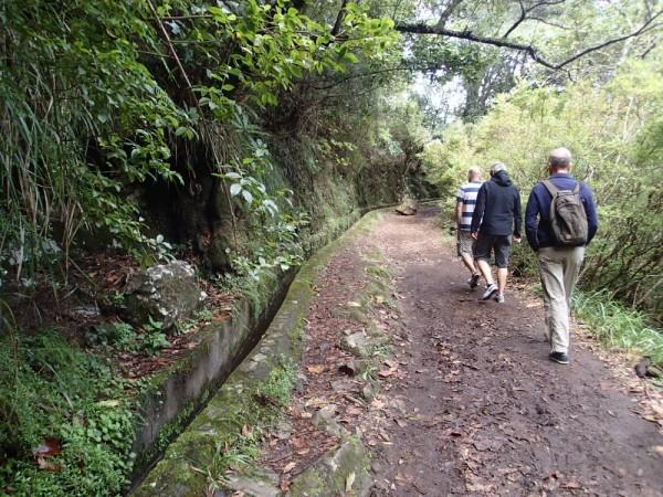 Wanderung entlang den Levadas