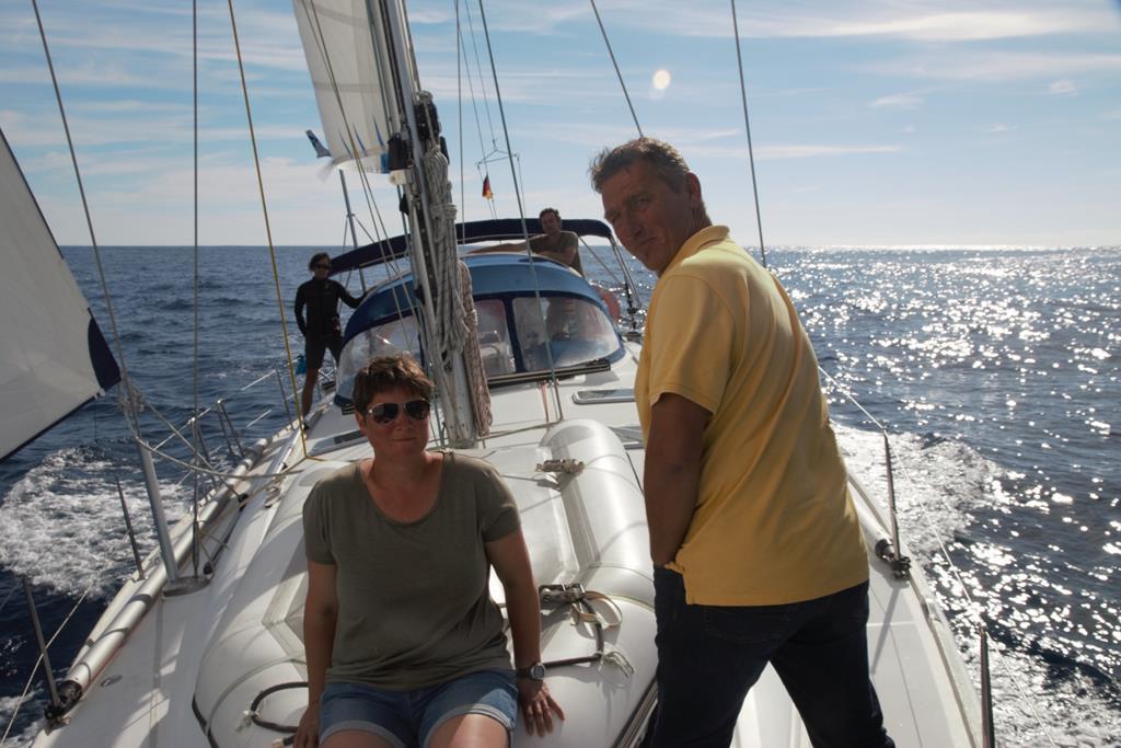 Wir beobachten die Meeressäuger beim Bugwellenreiten