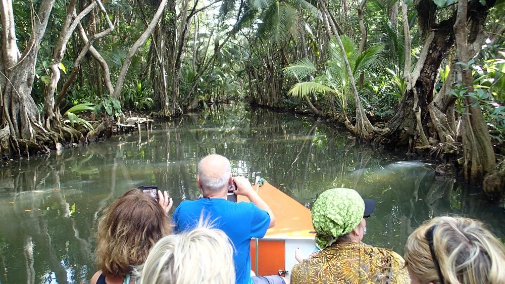 Dominika, Fahrt auf dem Indian River