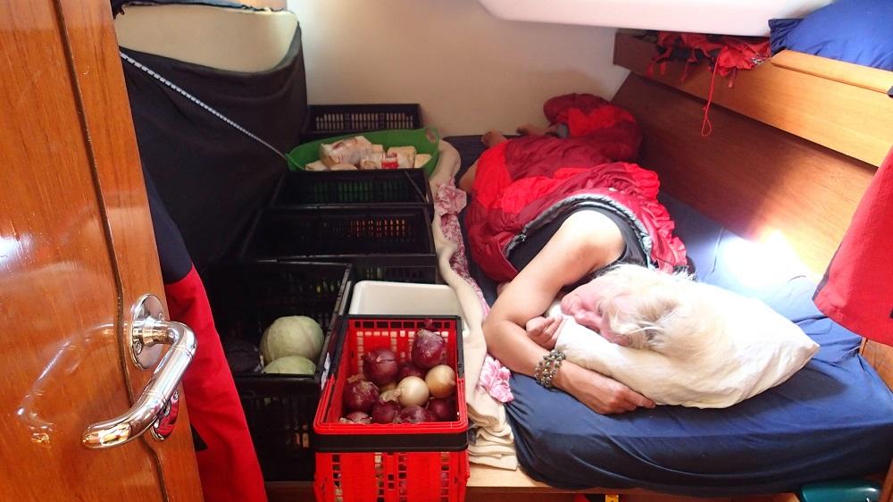 Die Kabine wird mit Gemüse, Obst und Mehl geteilt