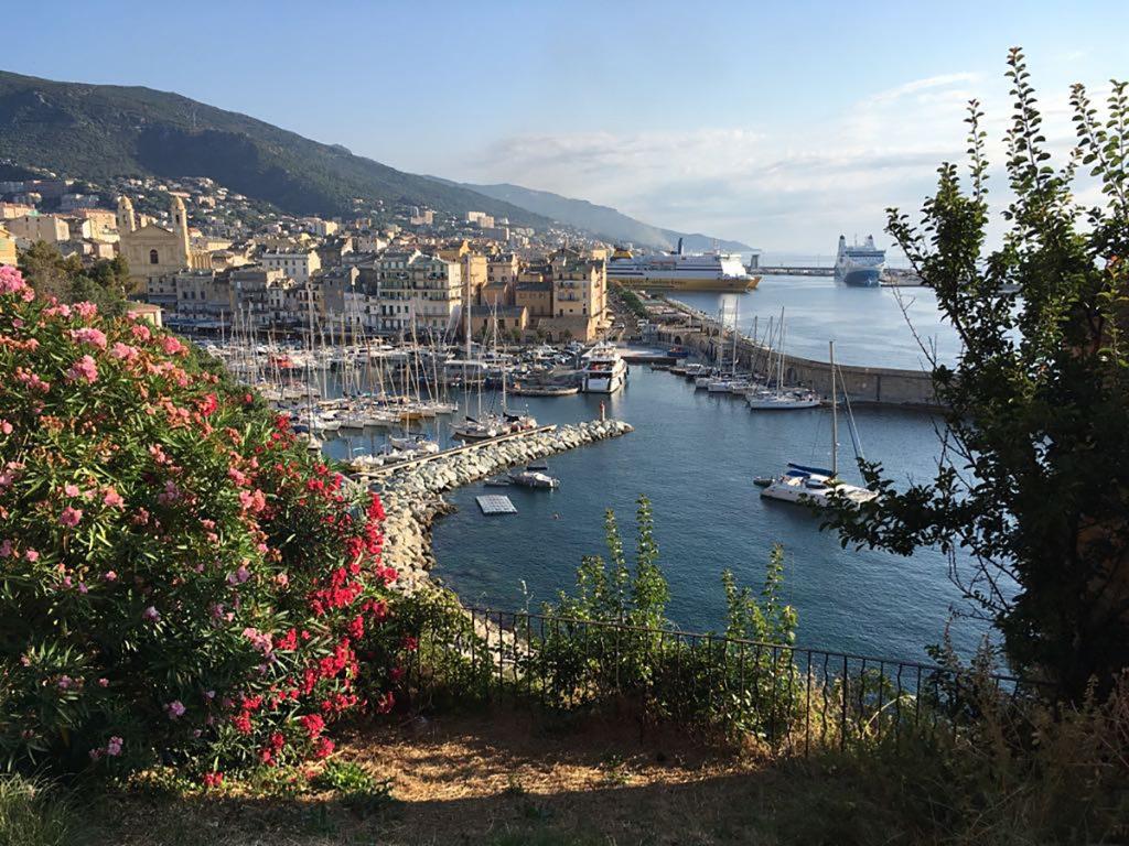 Der alte Hafen von Bastia