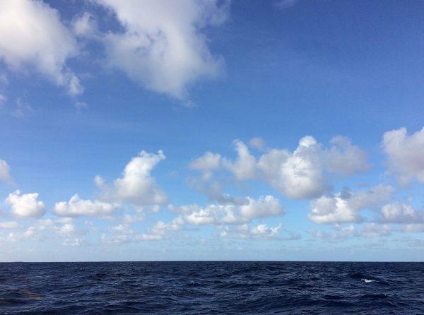 Herrliche Passatwolken