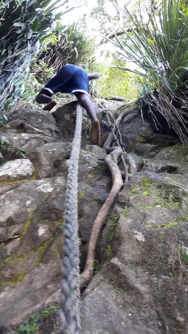 """und machen einen Ausflug auf den """"Petit Piton"""" – ganz schön steil…"""