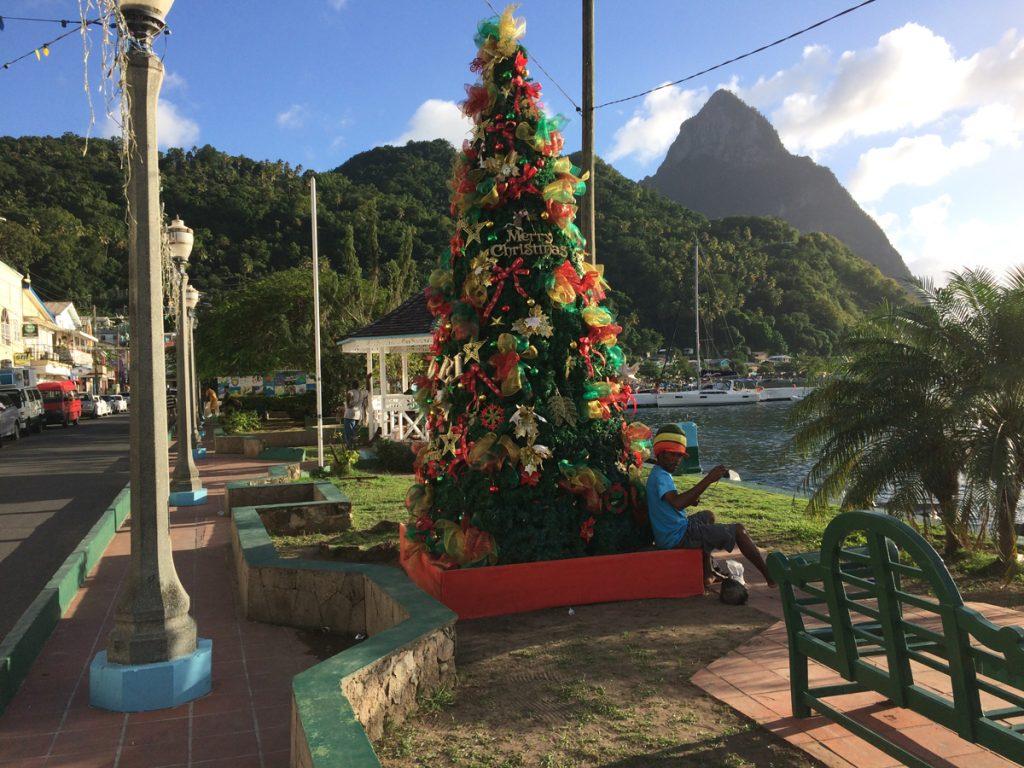 Rasta vor Weihnachtsbaum, vor Piton