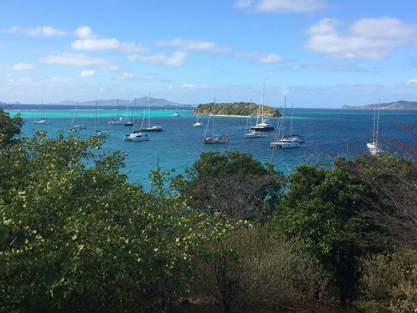 Blick von der kleinen Insel Baradal bei den Tobago Cays auf die davor ankernden Yachten