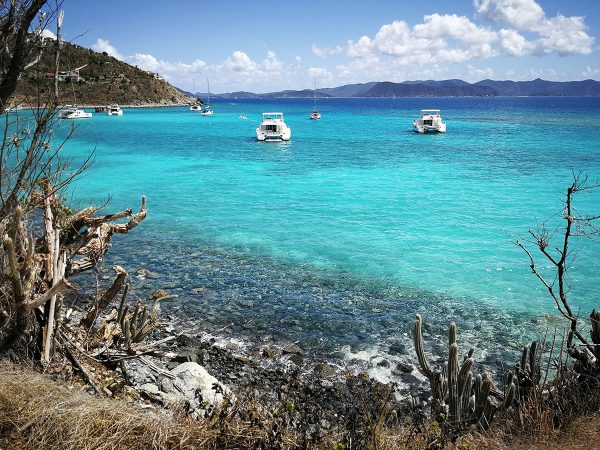 Die White Bay