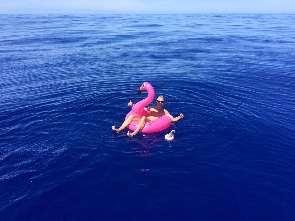 Ein Traum wird war – mitten auf dem Nordatlantik Badespaß mit Flamingo