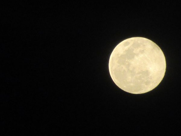 It´s Fullmoonparty-Time
