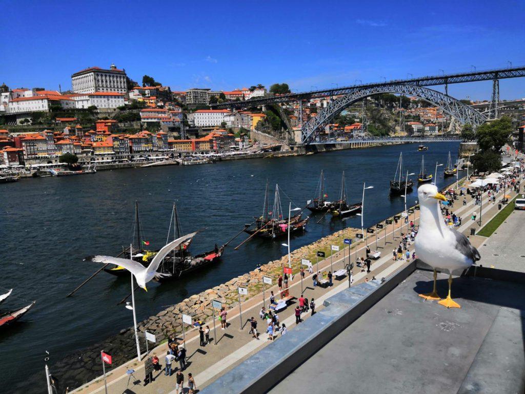 Ein wunderschöner Tag in Porto