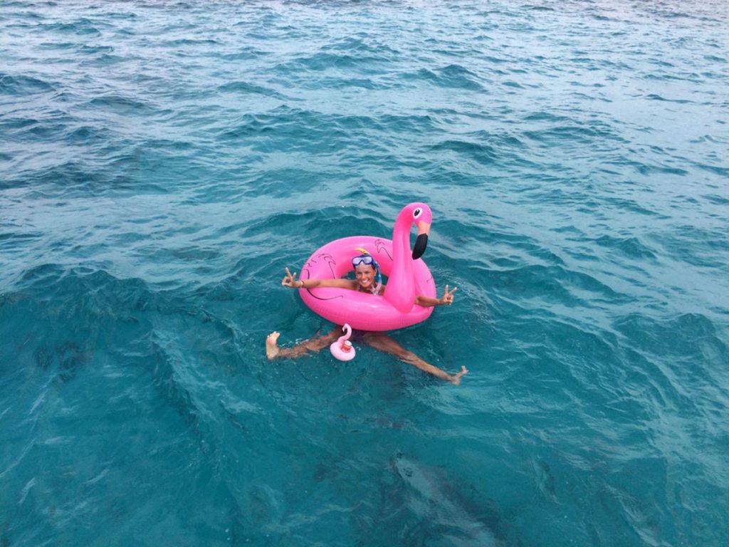 Flamingos machen gute Laune