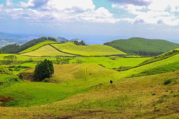 Azoren Horta Ponta Delgada