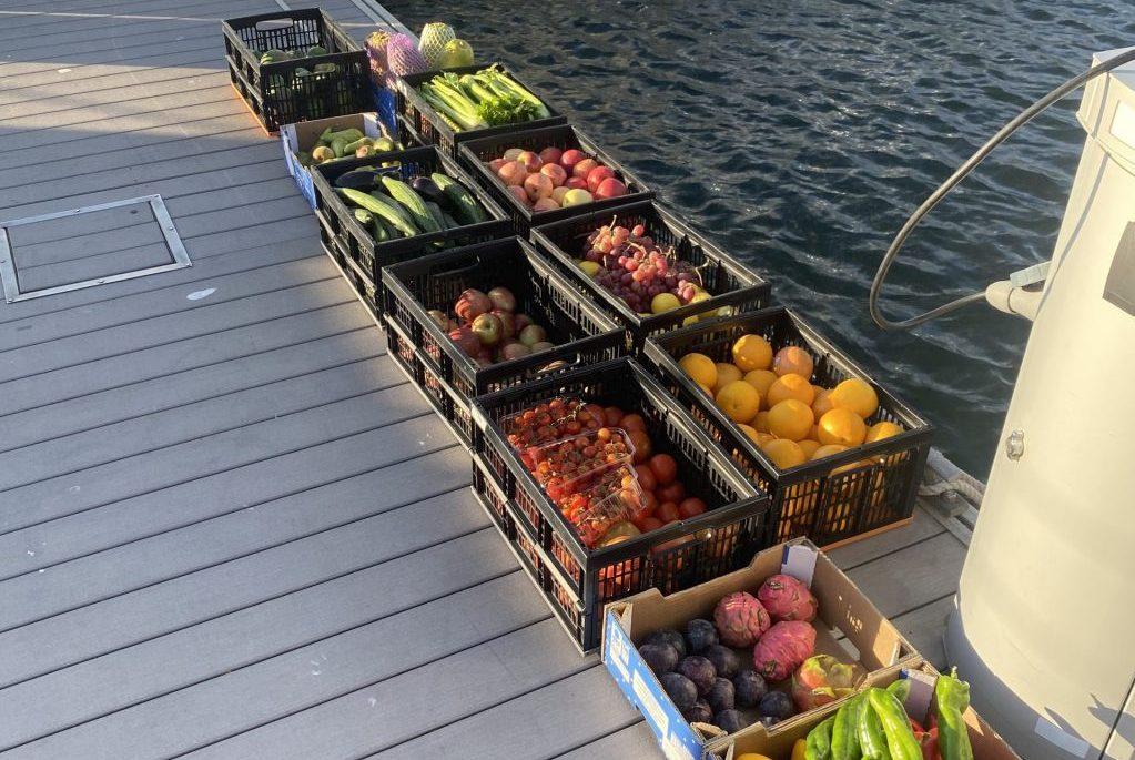 Obst und Gemüse für 3 Wochen