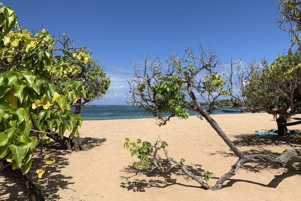 Herzlicher Strand Martinique