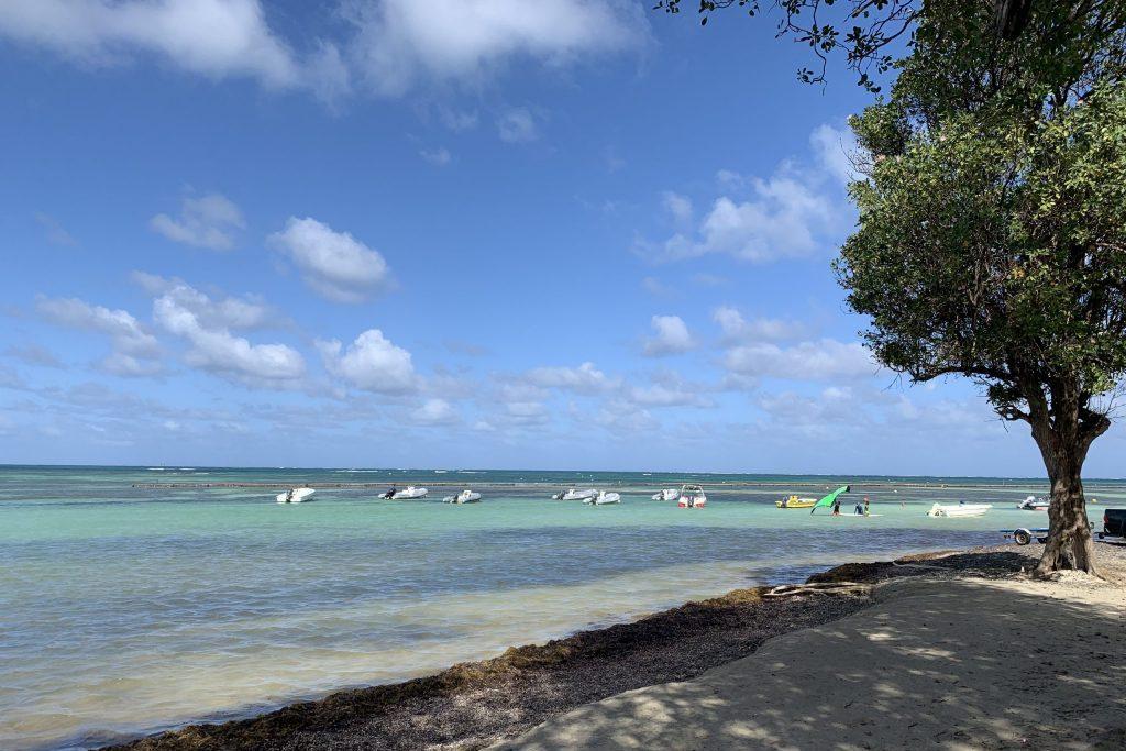 Segeln Karibik, die Ostseite von Martinique