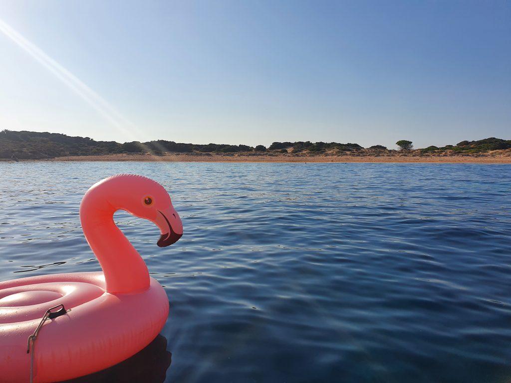 Die perfekte Ankerbucht für unseren Flamingo